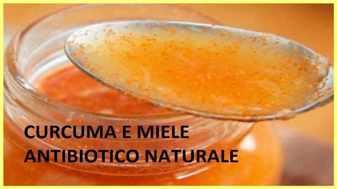 Curcuma e miele: un potente antibiotico naturale.Come prepararlo- Italy365