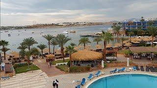 Египет Отель Марина шарм Обзор территории и пляжа
