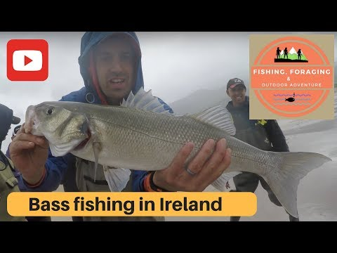 BASS FISHING IN IRELAND - Wild Atlantic Way