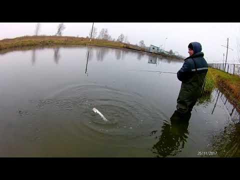 Рыбалка. Белоозерск 25,11,2017