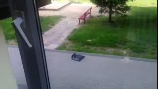 Выбросил комп в окно. Курва мать.