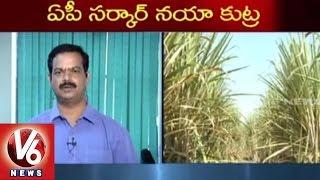 AP Govt Conspire on Telangana State | Export of Molasses Distillery Spirit | V6 News