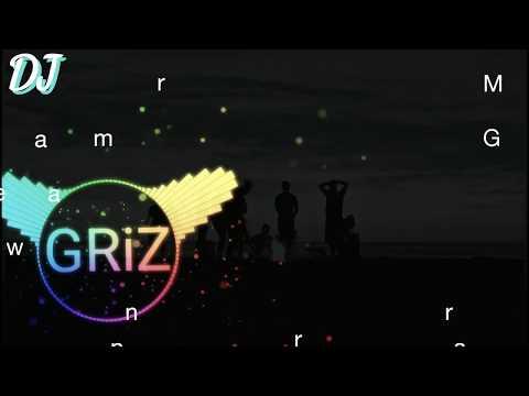 GRiZ Feat. Prob Cause - My Friends And I -  Lyrics Video