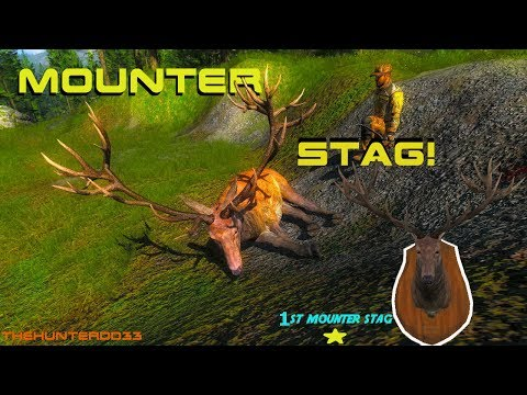 Finding WALL HANGERS 18!! Red Deer  THEHUNTER 2017