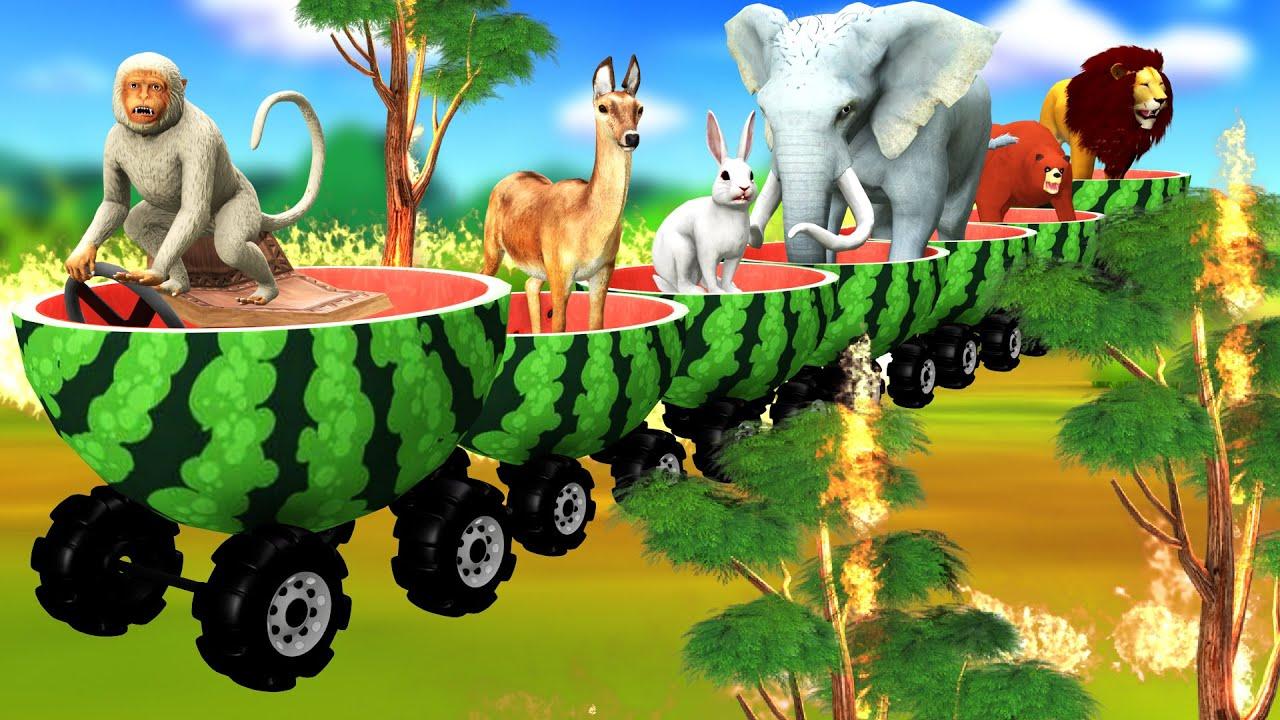पशु तरबूज ट्रेन Animals Watermelon Train Hindi Kahaniya हिंदी कहनिया Hindi Stories