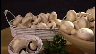 Готовим вместе: горячие закуски из шампиньонов - Не пропустите! - 27 марта
