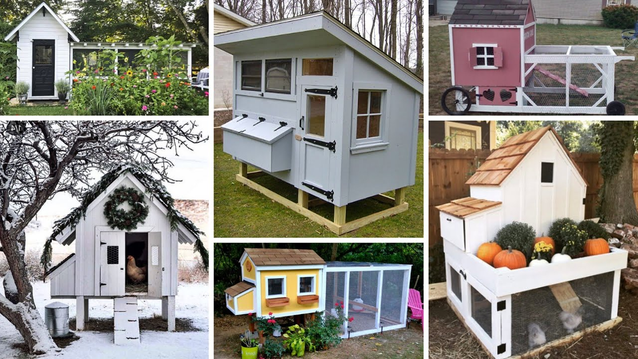 25 DIY Chicken Coop Ideas That Are Easy to Build