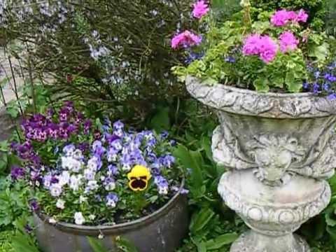 Jardin au printemps bruit naturel et chant d 39 oiseaux 2013 for Oiseaux de jardin au printemps