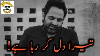 Tehzeeb Hafi New Poetry Status | Urdu Poetry | Shandaar Ho | New WhatsApp Sad Poetry Status