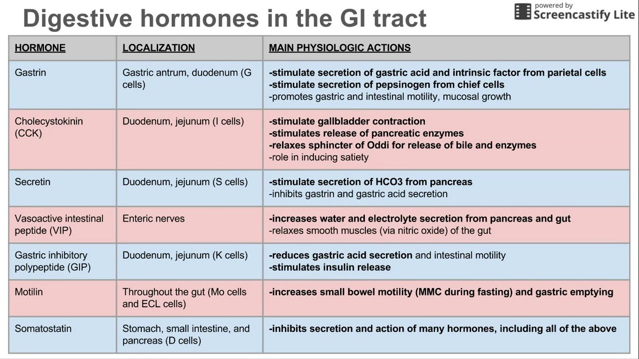 Digestive Hormones Of The Gi Tract Youtube