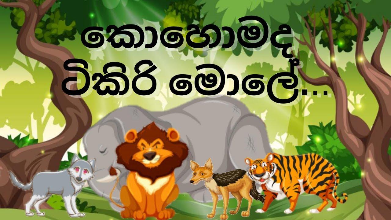 Download කොහොමද ටිකිරි මොලේ / Lama Kathandara Sinhala /Sinhala Cartoon /Lama Kathandara