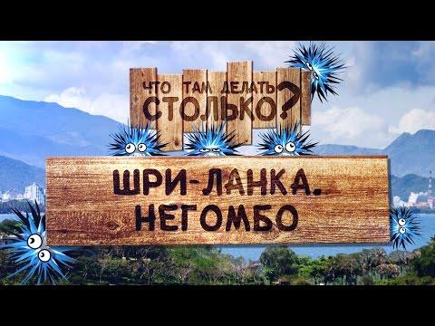 fotosav. Русские имена фамилии по-английски. Перевод
