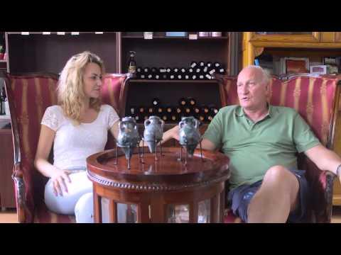 Intervju Goran Begovic - Terracon News Salon Kulture