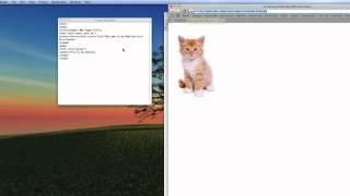 html tut part 2
