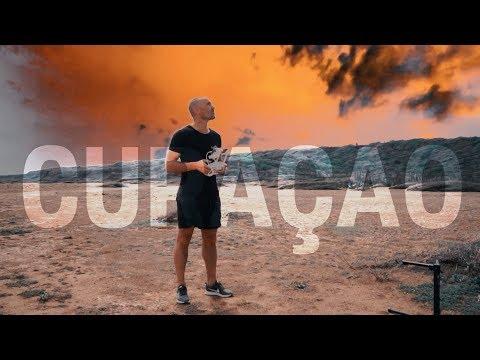 11 Shots Media at Curaçao | Papagayo Beach & Dolphin Academy