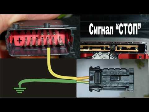 Citroen C4 Неисправности проводки задней двери