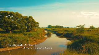 Nature Sounds: Countryside Ambience SFX (Free Download)