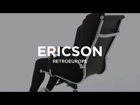 chaise bureau ergonomique retroeurop