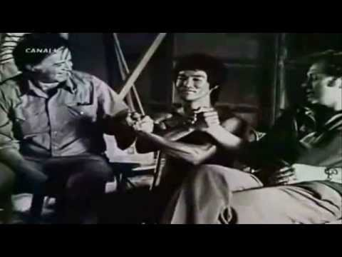 Vida y muerte de Bruce Lee - .teinteresaserm