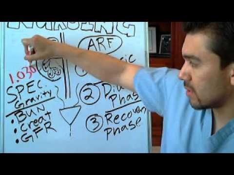 Acute Renal Failure Part 1 Bun Creat Ratios For