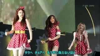 Sound source (音源) =「BUDOKAN」live 2013.