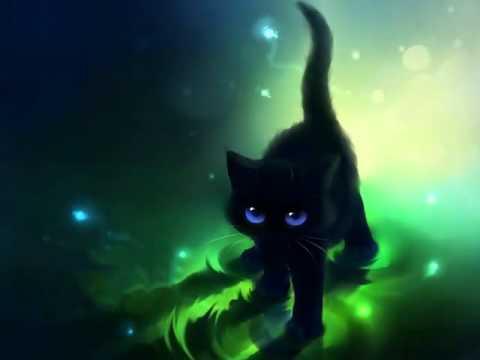 Картинки #1-котики просто чудо!