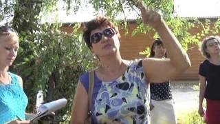 видео Обследование зеленых насаждений