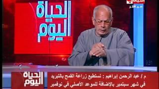 عبدالرحمن إبراهيم يشرح آليه زراعة القمح بالتبريد لتحقيق الإكتفاء الذاتي (فيديو)