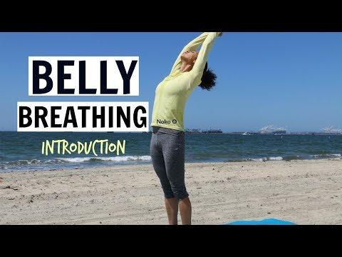 Belly Breathing (Ujjayi) For Beginners | Noko O