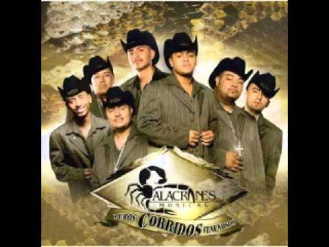 Alacranes Musical-El Criminal