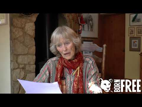 Virginia McKenna OBE reflects upon Pole Pole 🐘