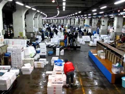 Check out the Carpool, Tsukiji Fish Market, Tokyo