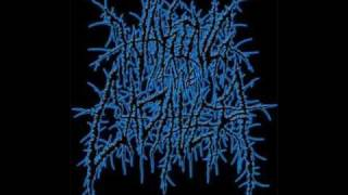 Waking The Cadaver- Pig tails are for Face fucking- *lyrics*