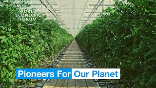 This pioneering dutch farm has found clever ways to generate higher yields using less space and fewer inputs. they're growing food that's more sustainable an...