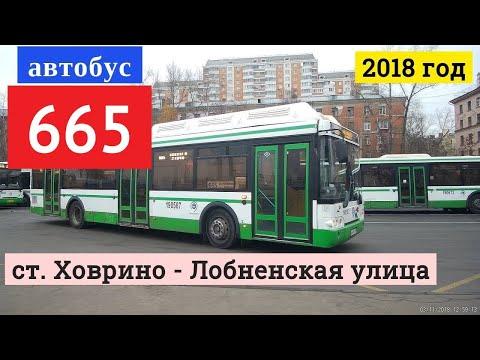 Автобус 665 ст. Ховрино - Лобненская улица // 3 ноября 2018
