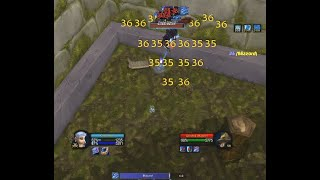 Basic Dire Maul East + North mage farming (Day 1) - WoW Classic