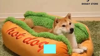 RAKAPA Hot Dog Pet Winter Beds Sofa Cushion Dog House