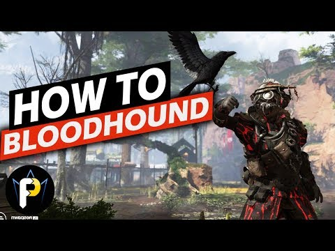 How to BLOODHOUND! | Apex Legends Character Guide