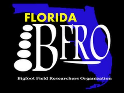 BFRO Report 42329 Cenecuh County, AL