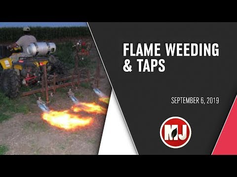 Flame Weeding and TAPS Competition | September 6, 2019