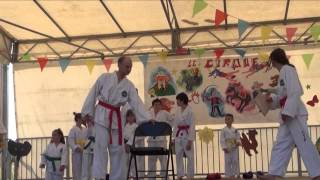 Association Avallonnaise Taekwon-do originel traditionnel ITF - Édition 2015 à Avallon (89)