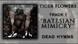 "Tiger Flowers - ""Batesian Mimicry"""