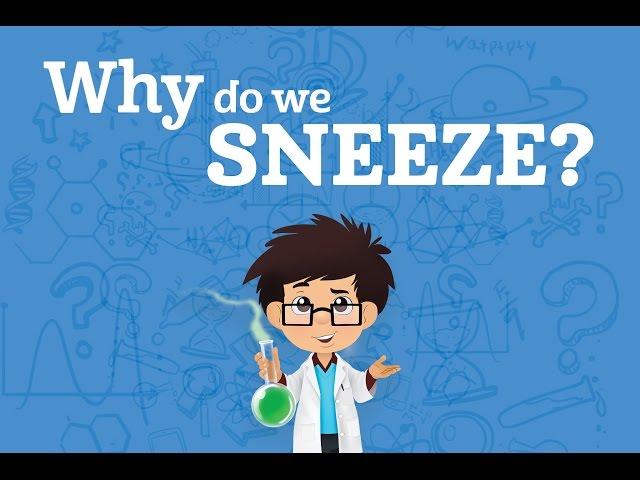Why do we sneeze? | Karim's WOW's (s01e1)