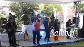 Grupo Musical Versátil Sambar - MIS SENTIMIENTOS - Los Ángeles Azules