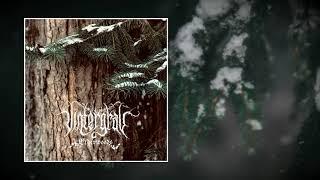 VINTERGRAV — ELDERWOODS [Full EP]