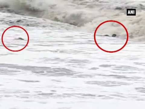 Caught on cam: 4 drown while taking selfie at Nagoa beach - ANI News