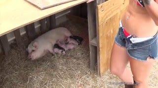 Farm Girl VS. Neighbor Farm Girl! Electrical storm!
