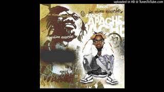 Apache - Venezuela representa