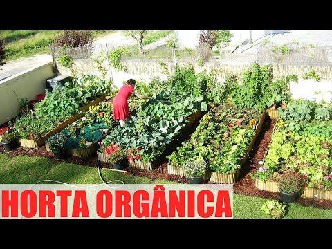 Horta org nica horta org nica como fazer youtube for Como criar peces ornamentales en casa