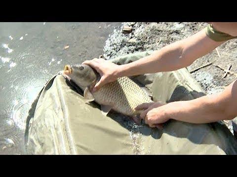 Большой улов: в Усть-Лабинском районе Кубани готовятся к соревнованим по рыбной ловле